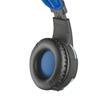 Εικόνα της Headset Trust Radius GXT-350 Surround 7.1 22052