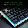 Εικόνα της Razer Keycap Upgrade Set for Mechanical & Optical Switches Mercury RC21-01490200-R3M1