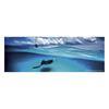 Εικόνα της Heye Puzzle - Parorama - Stingray Mini 75pcs 29531