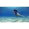 Εικόνα της GoPro Blue Water Snorkel Filter AACDR-001