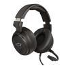 Εικόνα της Headset Trust GXT 433 Pylo 23381